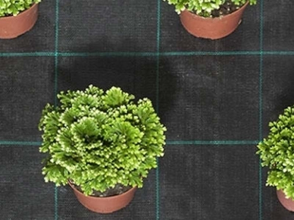 Ground Cover / Weed Fabric / Wind Break